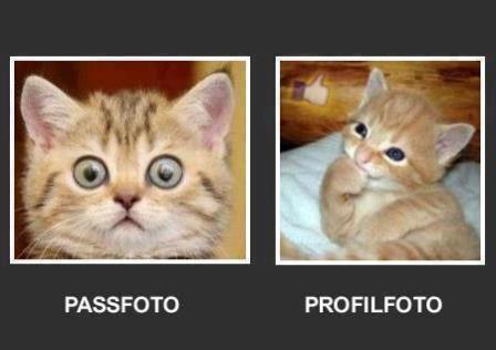 Biometrische Passbilder können Sie bei uns erstellen lassen.